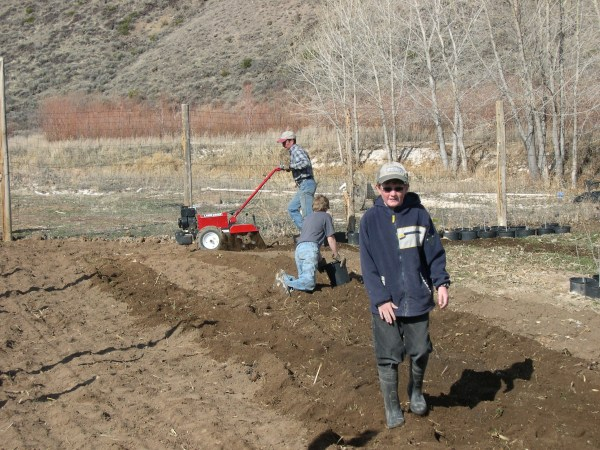 tilling-and-picking-rock